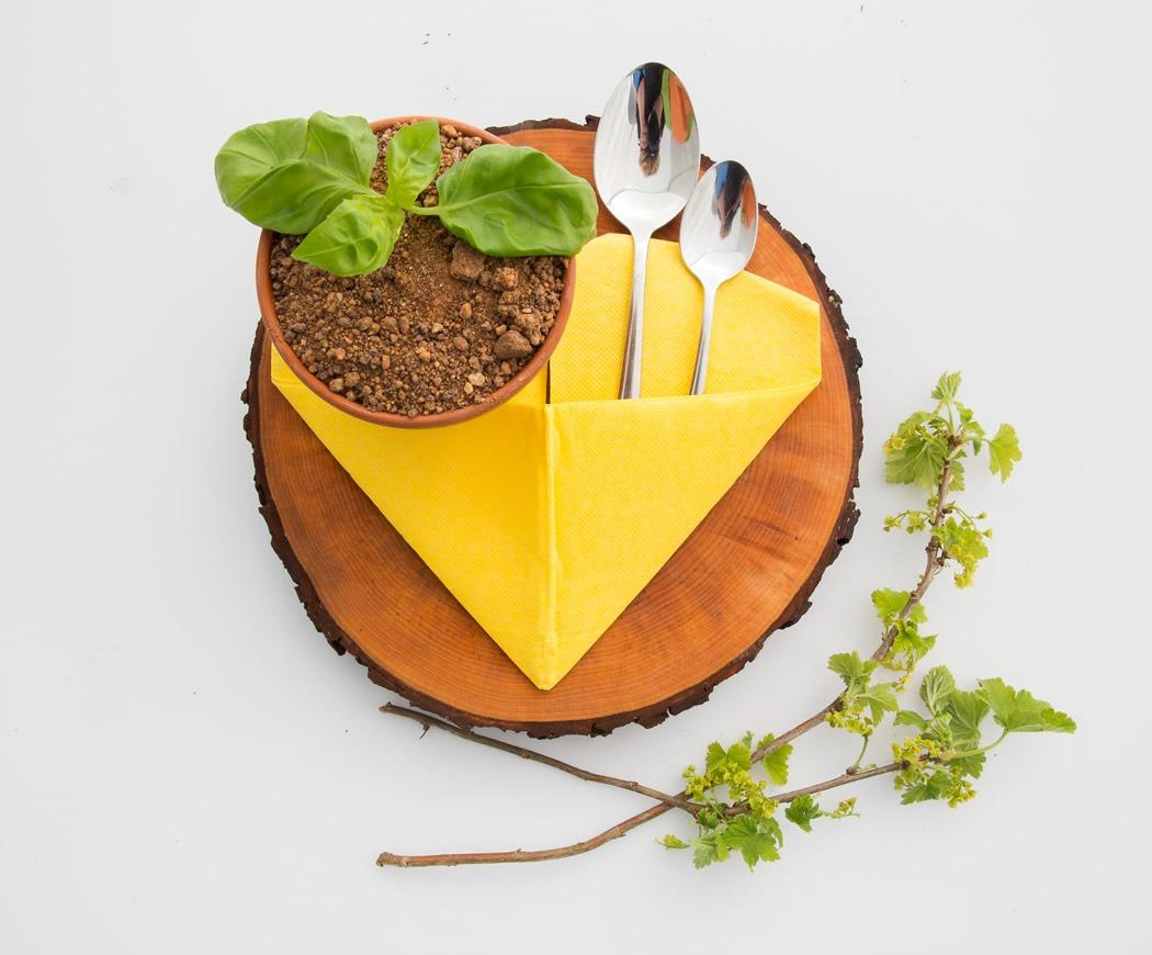 parim-soogikoht-parnus-kohvik-restoran-hea-maa-Tiramisu_lillepotis7