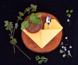 söögikohad pärnus ja pärnu söögikoht
